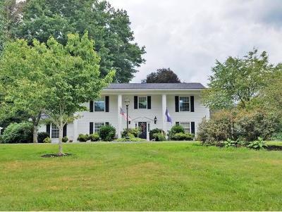 Abingdon Single Family Home For Sale: 19547 Old Jonesboro Rd