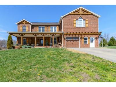 Abingdon Single Family Home For Sale: 15350 Hendricks Drive