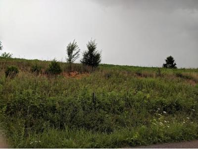 Residential Lots & Land For Sale: Old Stage Road