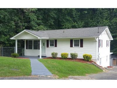 Elizabethton Single Family Home For Sale: 1321 Lowe Street