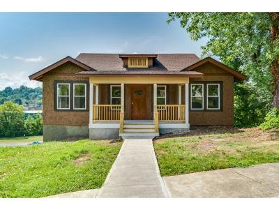 Johnson City Single Family Home For Sale: 301 Highland Ave