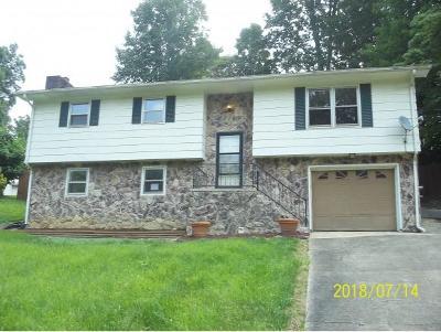 Elizabethton Single Family Home For Sale: 144 Lexington Avenue