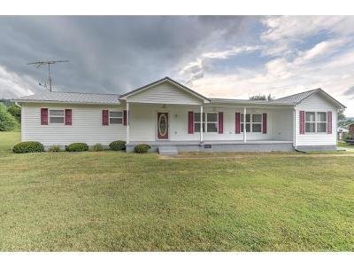 Rogersville Single Family Home For Sale: 578 Melinda Ferry Road