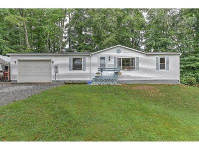Unicoi Single Family Home For Sale: 106 Crystal Ln