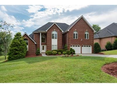Kingsport TN Single Family Home For Sale: $490,000