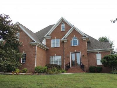 Rogersville Single Family Home For Sale: 133 Brooks Landing Circle