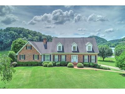 Hawkins County Single Family Home For Sale: 190 Timber Lake Drive