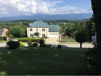 Greeneville Single Family Home For Sale: 1504 Crestwood Drive