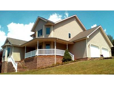 Fall Branch Single Family Home For Sale: 743 W. Campground Rd.