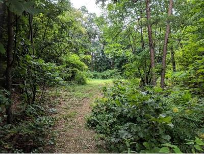 Residential Lots & Land For Sale: TBD Dennis Dr