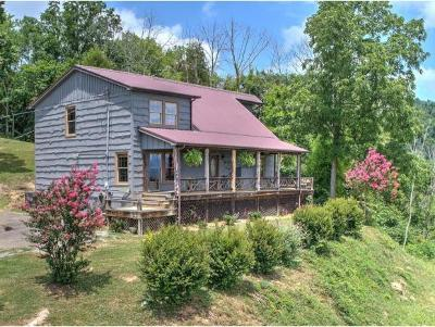 Greeneville Single Family Home For Sale: 1155 Mountain Loop