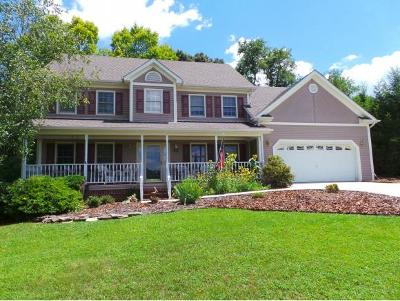 Kingsport Single Family Home For Sale: 212 Fox Chase Drive