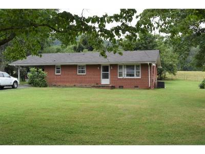Elizabethton Single Family Home For Sale: 156 Price Road