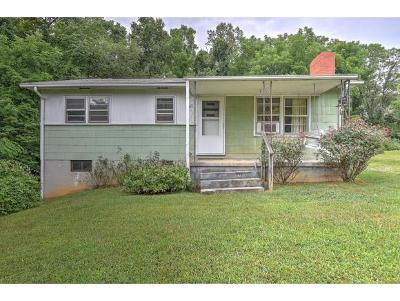 Single Family Home For Sale: 427 Frog Level Rd