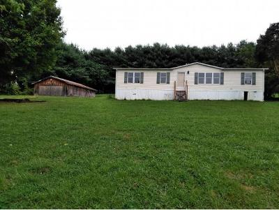 Single Family Home For Sale: 501 Chuckey Hwy