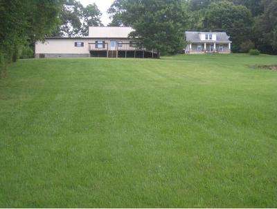 Single Family Home For Sale: 1109 Skelton Bluff Rd.