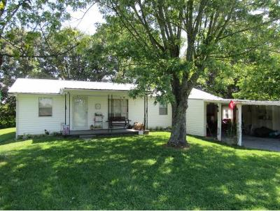 Single Family Home For Sale: 447 Craft Ln