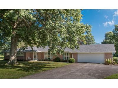 Abingdon Single Family Home For Sale: 18175 Westwood Drive
