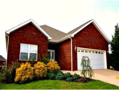 Jonesborough Single Family Home For Sale: 319 Sweetgrass Lane