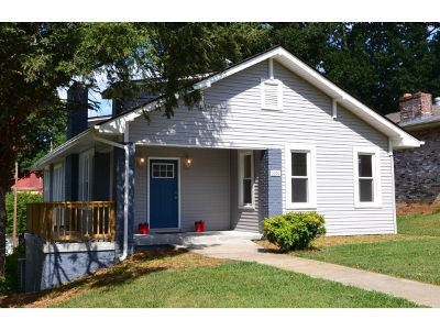 Bristol Single Family Home For Sale: 1001 Maryland Ave