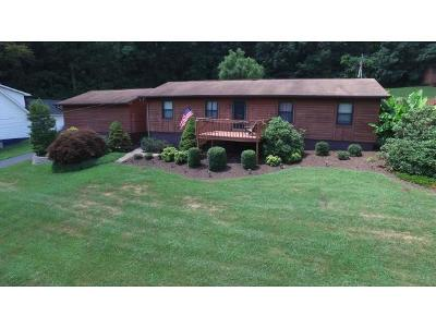 Blountville Single Family Home For Sale: 285 Spurgeon Road