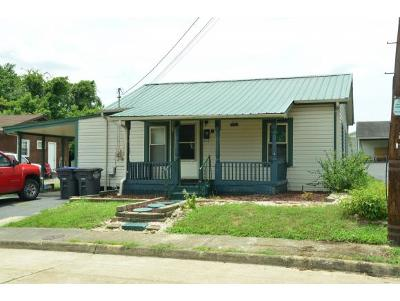 Kingsport Single Family Home For Sale: 2133 Steadman Street