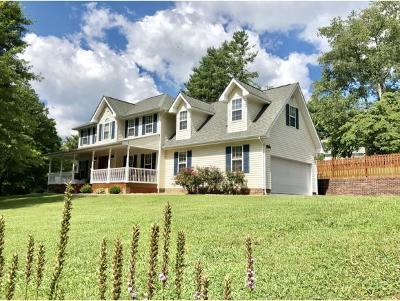 Bristol TN Single Family Home For Sale: $224,850