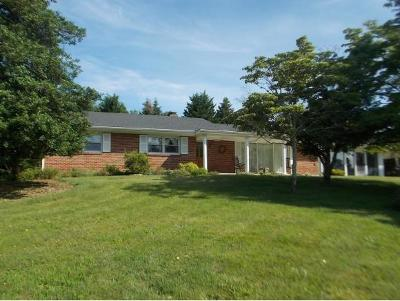 Damascus, Bristol, Bristol Va City Single Family Home For Sale: 14289 King Mill Pike