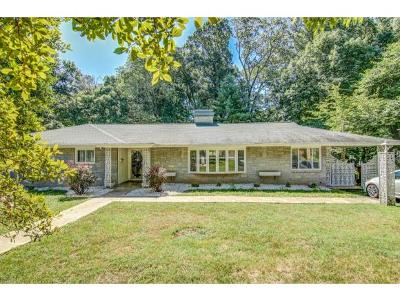 Johnson City Single Family Home For Sale: 1302 Woodland Avenue