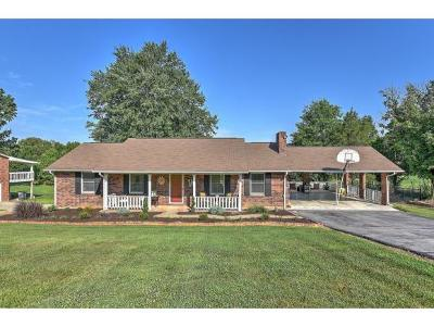Kingsport Single Family Home For Sale: 329 Parker Lane