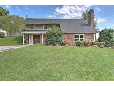 Jonesborough Single Family Home For Sale: 123 Dogwood Village Road