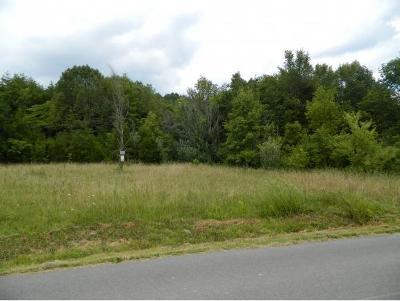 Blountville Residential Lots & Land For Sale: 544 Ethel Beard