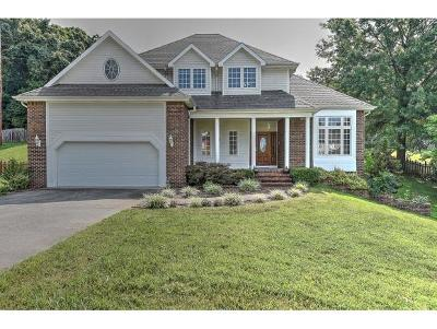 Kingsport Single Family Home For Sale: 1064 Timberidge Trail