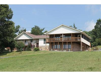 Bristol Single Family Home For Sale: 6471 Gate City Highway
