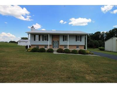 Gray Single Family Home For Sale: 584 Liberty Church Road