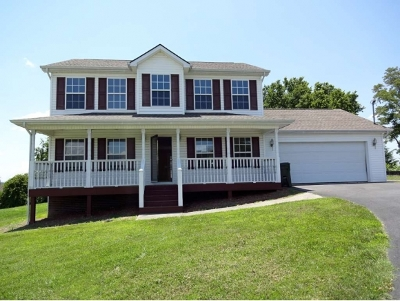 Piney Flats Single Family Home For Sale: 313 Caden Way