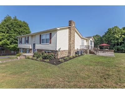 Kingsport Single Family Home For Sale: 595 North Holston River Dr.