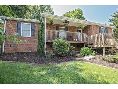 Kingsport Single Family Home For Sale: 316 Montezuma Rd.