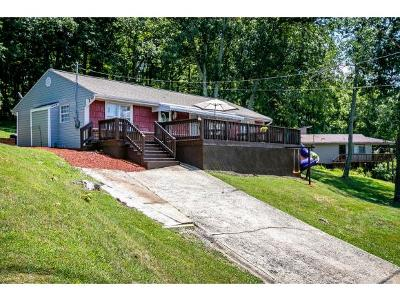 Kingsport Single Family Home For Sale: 931 Cooper St.