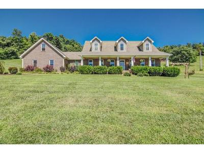 Elizabethton Single Family Home For Sale: 490 Sycamore Shoals Dr.
