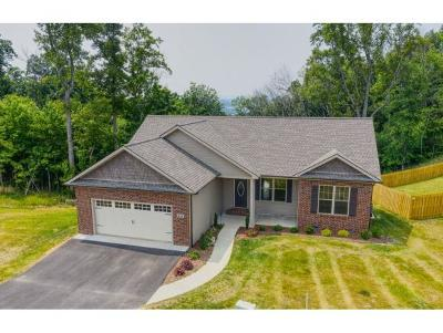 Jonesborough Single Family Home For Sale: 351 Mountain Creek Ct