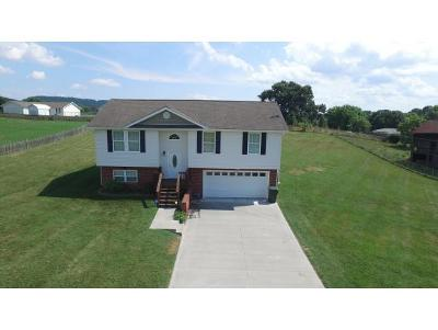 Gray Single Family Home For Sale: 261 Roscoe Fitz Rd.