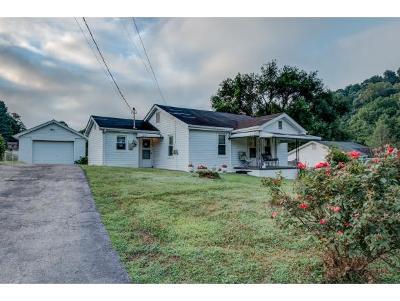 Blountville Single Family Home For Sale: 122 Barr Rd.