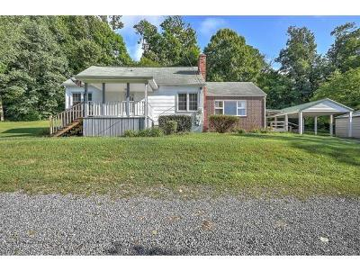 Blountville Single Family Home For Sale: 416 Dunlap Rd