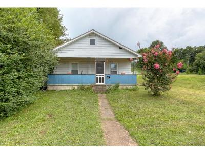 Johnson City Single Family Home For Sale: 709 W Main St