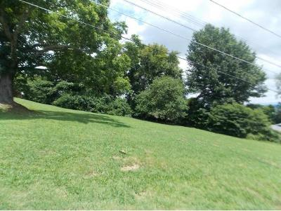 Bristol Residential Lots & Land For Sale: TBD Lewis Street