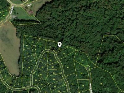Unicoi Residential Lots & Land For Sale: TBD Fawn Lane Lot #18