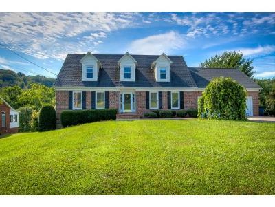 Kingsport Single Family Home For Sale: 1951 Rock Springs Rd