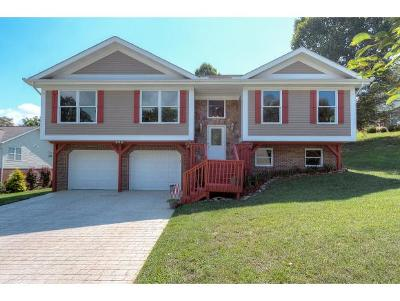 Jonesborough Single Family Home For Sale: 260 Holland View Dr.
