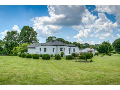 Bristol Single Family Home For Sale: 1761 Lee Highway